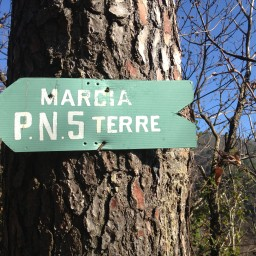 It's that time of year again!  Schedules for guided hikes in the Cinque Terre