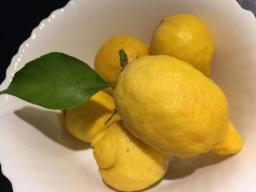 Festa del Limone in Monterosso