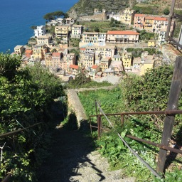 Cinque Terre National Park guided tours & excursions: August 2017