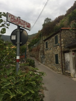 Cinque Terre National Park guided tours & excursions: September 2017
