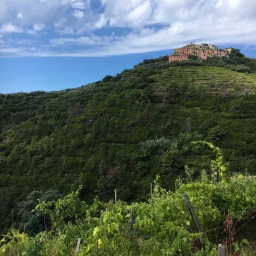 Cinque Terre guided tours & excursions: September 2018
