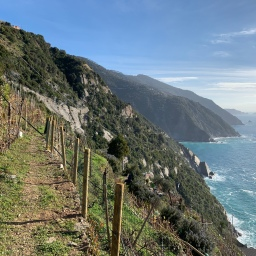 Cinque Terre guided hike: Easter edition